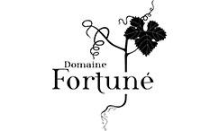 logo-domaine-fortune